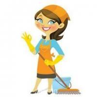 Өдөрт хоол хийх мөн цэвэрлэгээ сайн хийдэг 35 хүртэлх насны эмэгтэй хүн ажилд авна.N
